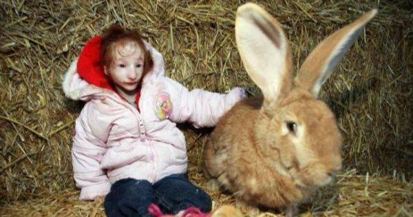 世界上最迷你的女孩!小女孩竟跟兔子一样大!看到她的生活大家都觉得自己的眼睛坏了!